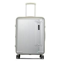Carlton Tube Spinner Case 65 Silver